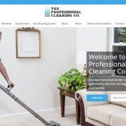 The Pro Cleaning Company